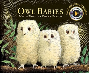 Owl Babies DVD
