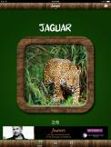 Free Animal Sounds - Jaguar