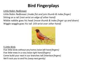 preschool bird songs and fingerplays jen in the library storytimes programs and library thoughts 689