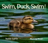Swim Duck Swim by Lurie