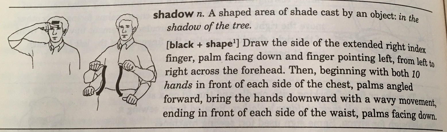 asl-shadow | Jen in the Library