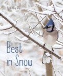Sayre-Best_In_Snow
