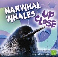Rake-Narwhal_Whales_Up_Close